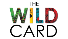 The Wild Card: 7 Steps to an Educator's Creative Breakthrough (SWD)