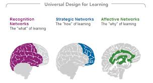 Universal Design for Learning (SWD)