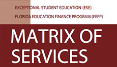 Matrix of Services